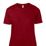 Ladies Fashion Fit Tee